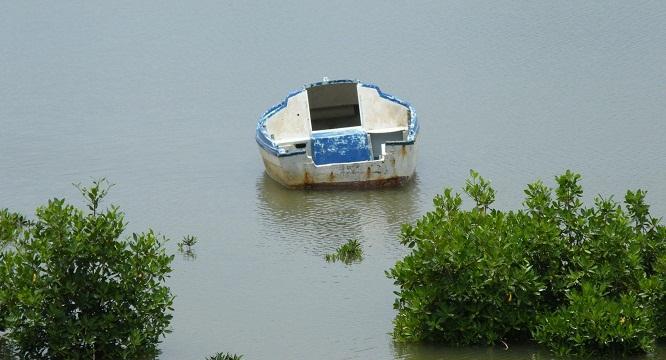 Barque - Sénégal